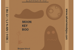 Moon key boo 2